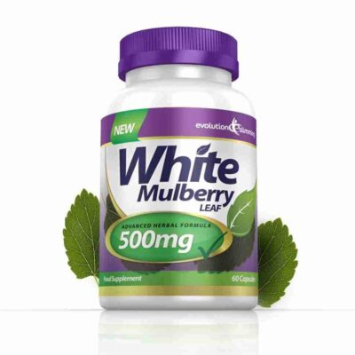 WHITE MULBERRY LEAF EXTRACT 500mg.
